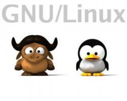 GNU / Linux